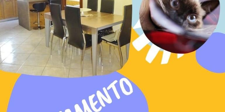 apPARTAMENTO ROMEO